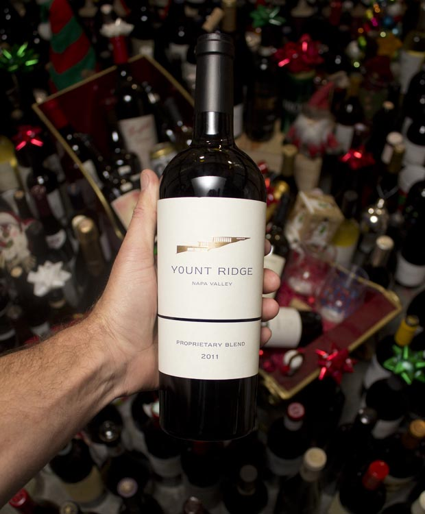 Yount Ridge Proprietary Red Blend Napa Valley 2011